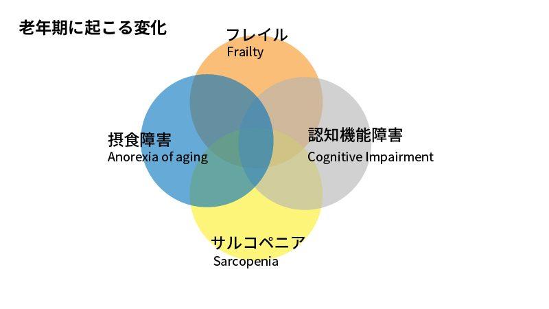 老年期に起こる変化の図